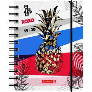 brunnen schülerkalender pineapple