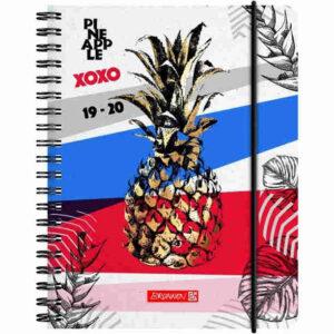 brunnen schülerkalender pineapple_a6