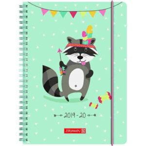 brunnen schülerkalender racoon a5
