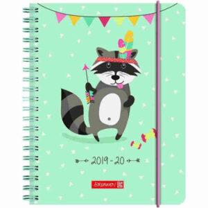 brunnen schülerkalender racoon